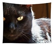 Black Cat Tapestry