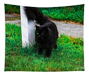 Black Cat Maine Tapestry