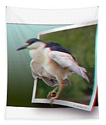 Black Crowned Night Heron - Use Red-cyan 3d Glasses Tapestry