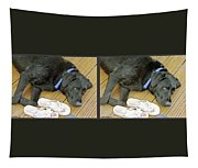Black Lab - Gently Cross Your Eyes And Focus On The Middle Image Tapestry