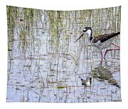 Black-necked Stilt, No. 2 Tapestry