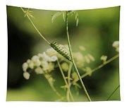 Black Swallowtail Caterpillar Tapestry