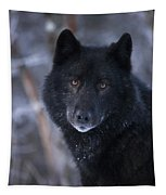 Black Wolf Portrait Tapestry