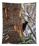 Black Woodpecker Peek Tapestry