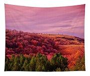 Blazing Autumn Tapestry