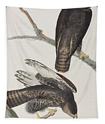 Blck Warrior Tapestry