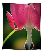 Bleeding Heart Macro Tapestry