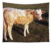 Blond Calf Tapestry