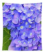 Blooming Blue Hydrangea Tapestry