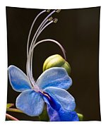 Blooming Butterfly Tapestry