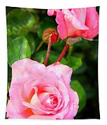 Blooming In Phases Tapestry