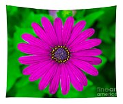 Blooming Purple Tapestry