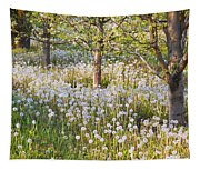Blossoms Growing In A Fruit Orchard In Tapestry
