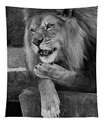 Blow You A Kiss  Black And White  T O C Tapestry