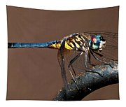 Blue And Gold Dragonfly Tapestry