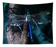 Blue And Green Dragonfly Tapestry