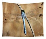 Blue Beauty Tapestry