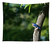 Blue Bird Perched Tapestry