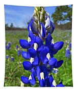 Blue Bonnet Tapestry