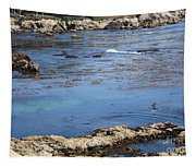 Blue California Bay Tapestry