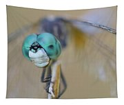 Blue Dasher Dragonfly #1 Tapestry