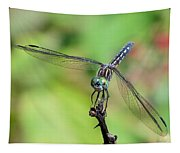 Blue Dasher Dragonfly On A Branch Tapestry