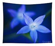 Blue Etoile Tapestry