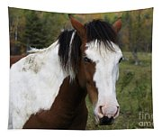 Blue Eyed Beauty Tapestry