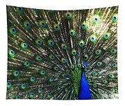 Blue Eyes Tapestry