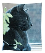Blue Grey Contemplating Cat Tapestry