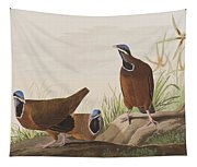 Blue Headed Pigeon Tapestry