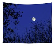 Blue Moon Among The Tree Tops Tapestry