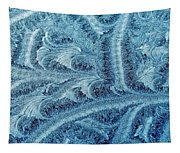 Extraordinary Hoarfrost Scallop Patterns In Blue Tapestry
