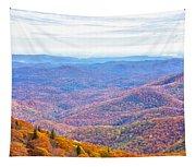 Blue Ridge Mountains 3 Tapestry