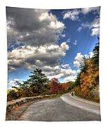 Blue Ridge Parkway, Buena Vista Virginia 4 Tapestry