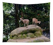 Blue Sheep Tapestry
