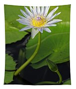 Blue Water Lily Tapestry