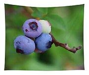 Blueberries On The Vine 3 Tapestry
