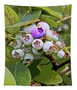 Blueberries On The Vine 7 Tapestry