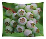 Blueberries On The Vine 9 Tapestry