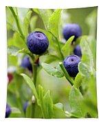 Blueberry Shrubs Tapestry