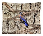 Bluebird On Canary Island Palm II Tapestry