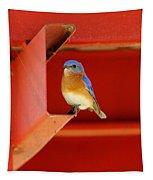 Bluebird On Red Tapestry