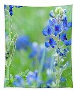 Bluebonnets Tapestry