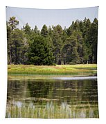 Bluff Lake Ca 12 Tapestry