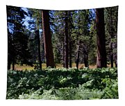 Bluff Lake Ca Fern Forest 4 Tapestry