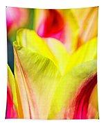 Blushing Lady Tulips Tapestry