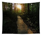 Boardwalk To The Sun Tapestry