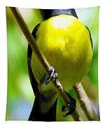 Boastful Bird Tapestry