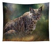 Bobcat Gaze Tapestry
